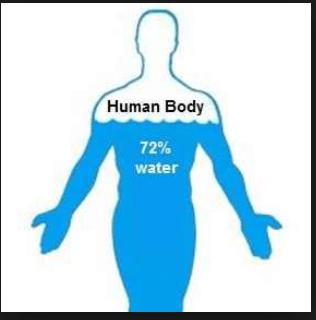 water human